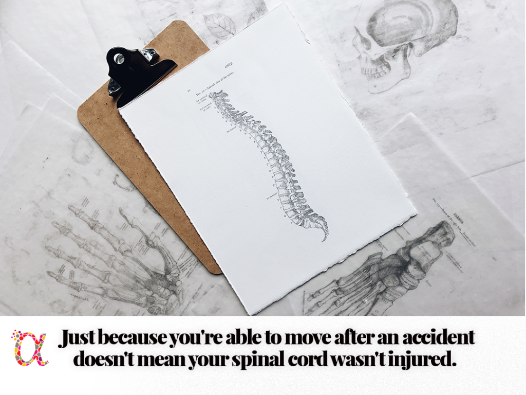 Chiropractic care after a car accident can diagnose spinal cord injuries.